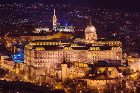 Royal palace in Budapest Hungary - cityscape architecture background