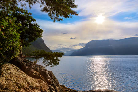 Fjord Sognefjord in Norway - nature and travel background Фото со стока