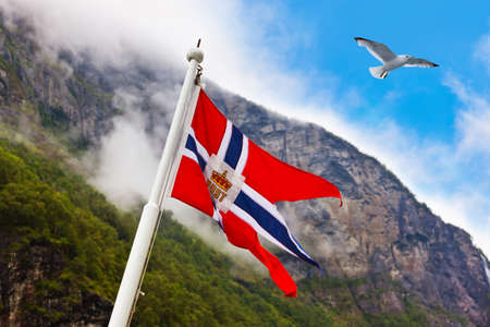 Norway flag and seagull - nature and travel background