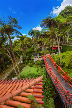 Monte Tropical Garden in Madeira Portugal - travel background