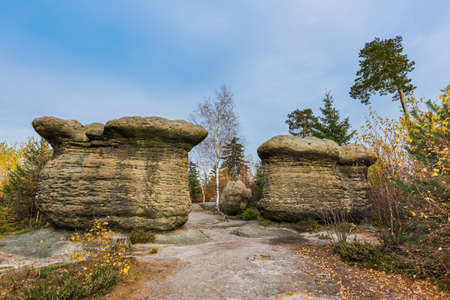 Stone mushroom in Adrspach-Teplice Nature park in Czech - travel and nature background Zdjęcie Seryjne