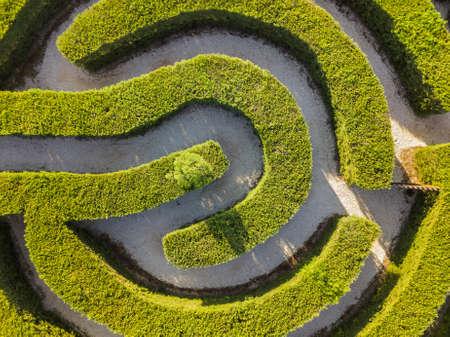 Maze of bushes in botanical park - Ayia Napa Cyprus - nature background
