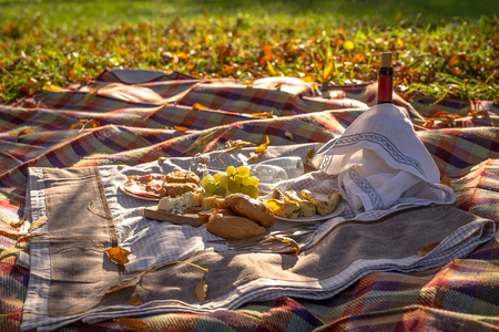 Picnic food set on tablecloth outside in the autumn nature Banco de Imagens