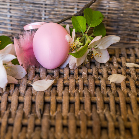chicken egg: Closeup of pink colored chicken egg with spring flowers