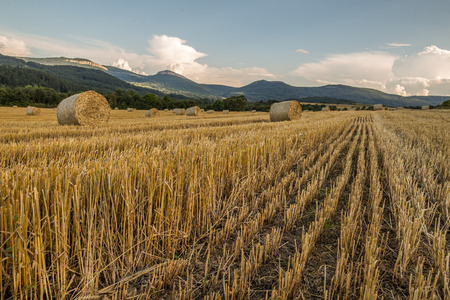 hay bales: Agricultural landscape of hay bales and mountain peaks Stock Photo