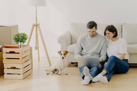 Young European family couple relax during home renovation, focused in laptop computer, plan redecoration, sit near couch with favourite pedigree dog, boxes with personal stuff and floor lamp