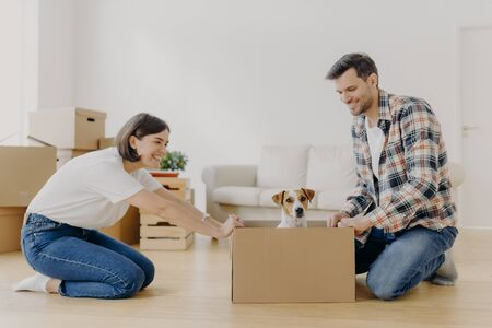 Horizontal shot of lovely woman moves cardboard box with small puppy to husband side, spend free time together, move in new modern dwelling, unpack belongings, start new life in modern flat. Фото со стока