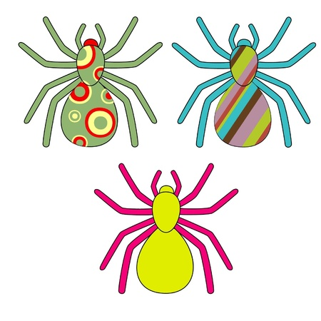 Bright colourful spiders with a pattern on paunches Illustration