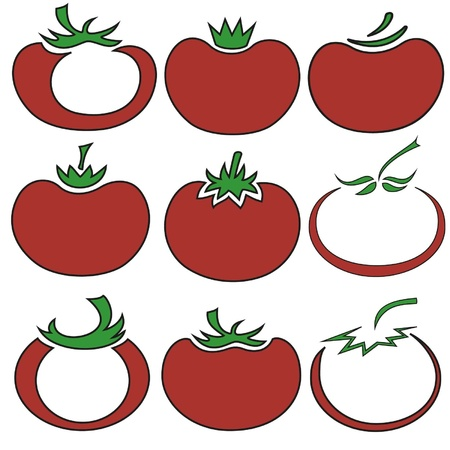 Vector illustration of tomato in different styles Stock Vector - 13216613