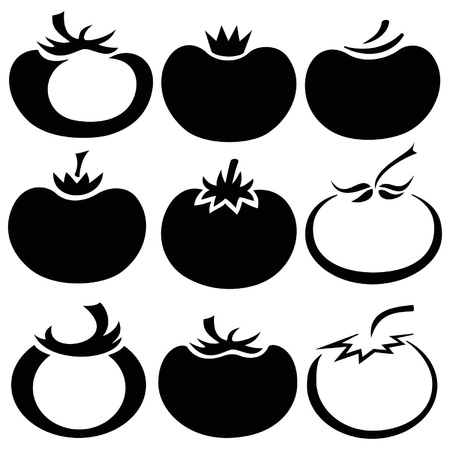 Vector illustration of tomato in different styles