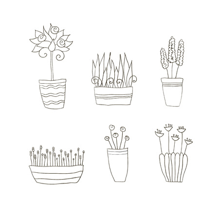 Set of pot plants with flowers and leaves Vector