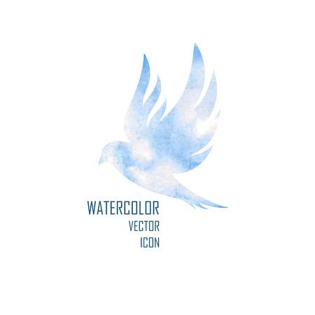 Oiseau. colombe, isolée avec des ailes élargies sur fond blanc Banque d'images - 36093134
