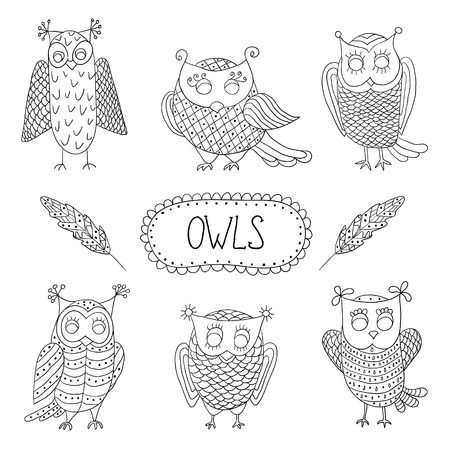 Cute cartoon vector owls  with text and feathers Vector