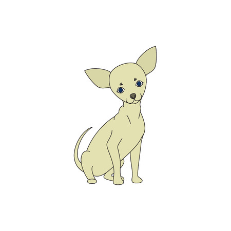 dwarfish: Chihuahua dog sitting on a light background Illustration