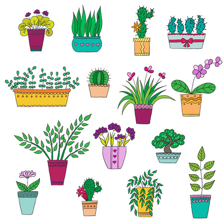 seed pots: Cute hand drawn vector flowers and leaves in the pots.