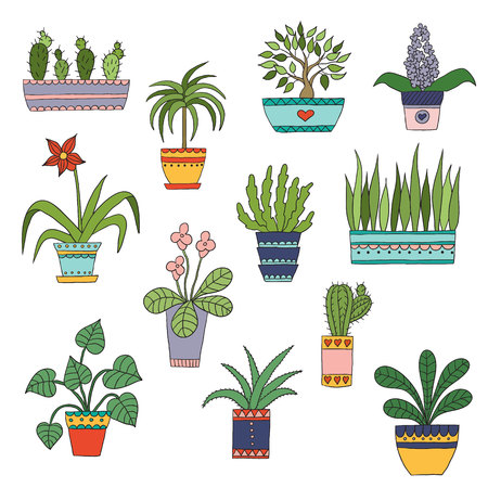 Cute hand drawn vector flowers and leaves in the pots.