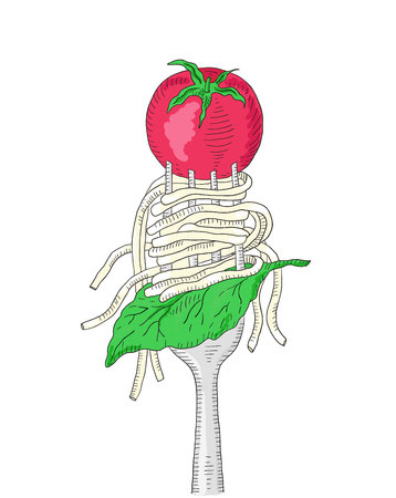 italian pasta: Spaghetti with cherry tomato and Basil leaf on a fork. Hand drawn italian pasta. Illustration