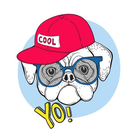 Dog pug in blue sunglasses and a red cap with the inscription cool. And the slogan YO. Vector illustration for t-shirt design.