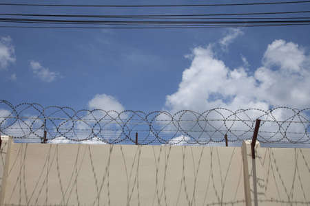 barbed wire with blue sky in prison photo