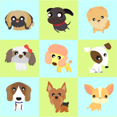 9 강아지