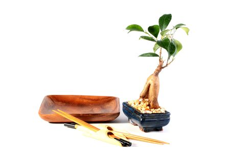 Wooden empty plate, set of chopsticks and young tree bonsai.