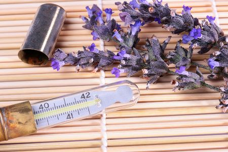homoeopathic: The medical thermometer in an ancient metal case with a lavender branch. A theme of homoeopathic remedies.