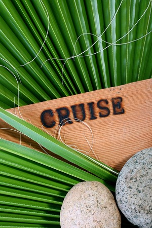 burnt out: On a wooden board text Cruise is burnt out and the palm branch lies. A background for travel agencies.