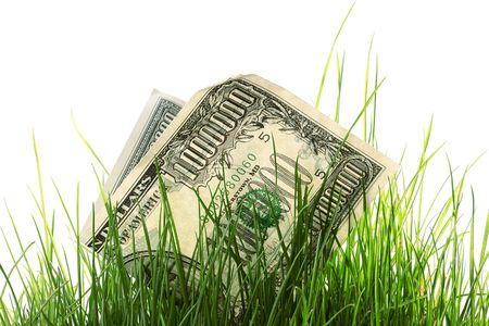 Loss of money in a high grass.