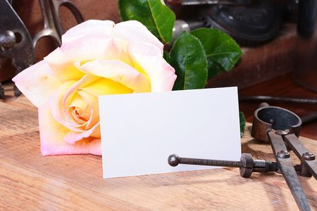 Business card for placing of the text against a rose in a metalwork workshop.