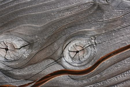 Old wooden, knotty surface as a background.