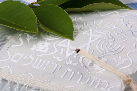Green leaves on a blue and white tallit. Add your text to the background. photo