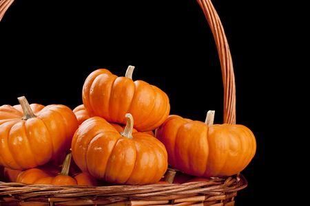 Small orange pumpkins symbolising autumn holidays and used in decorative works. Stock Photo - 7933140