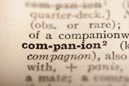 companion: Word companion from the old dictionary, a close up.