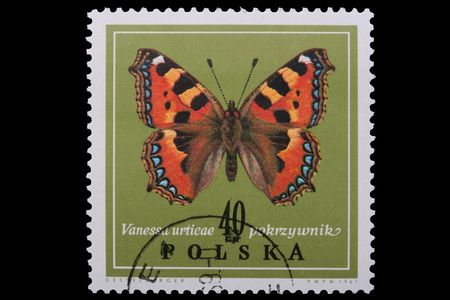 Poland - CIRCA 1967: A stamp is printed in Poland, Vanessa urticae, let out CIRCA in 1967. Фото со стока