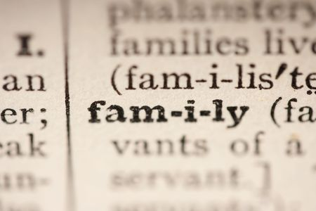Word family from the old dictionary, a close up. photo