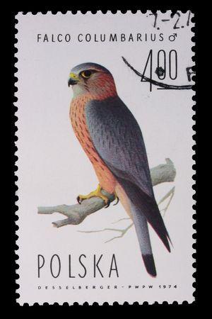 mago merlin: Polonia - CIRCA 1974: Un sello est� impreso en Polonia, Merlin, donada CIRCA en 1974.