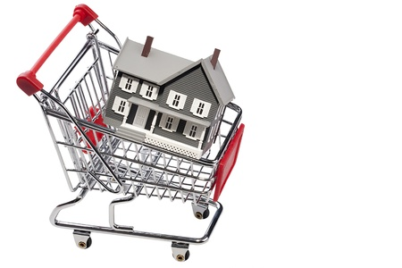 House model in a shopping cart isolated on a white background. Add your text to the space. photo