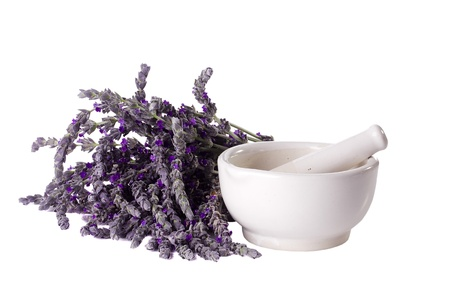 Mortar and pestle next to a bundle of lavender on a white background. Stock Photo - 10425530
