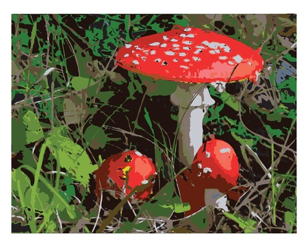 food poisoning: Illustration inedible mushrooms in the grass Illustration