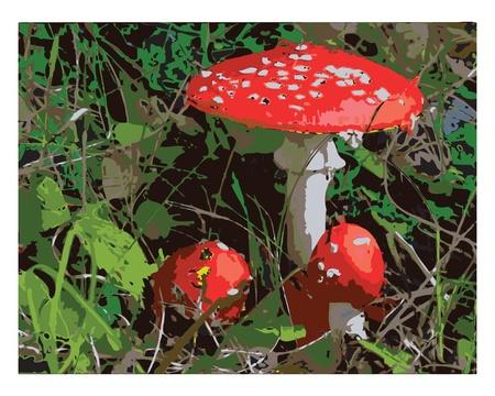 poisoning: Illustration inedible mushrooms in the grass Illustration