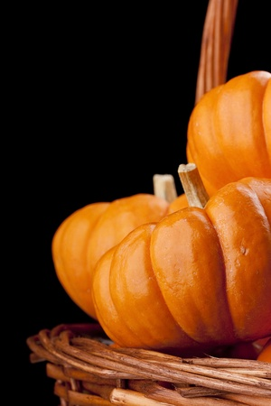 Small orange pumpkins symbolising autumn holidays and used in decorative works. Stock Photo - 10530732