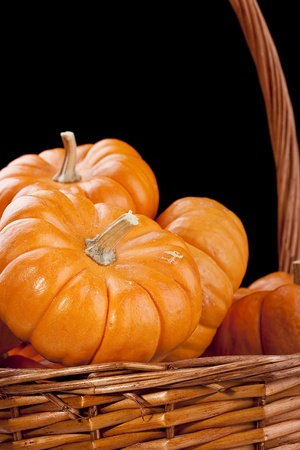 Small orange pumpkins symbolising autumn holidays and used in decorative works. Stock Photo - 10680004
