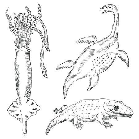 paleontologist: Fossil of prehistoric animals living in the aquatic environment. Vector illyustrvtsiya. Figure is made by hand.