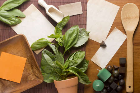 Directly above photograph of basil leaves, papers, and decorative objects for herbal medicine or culinary topics. Add your text to the papers. photo