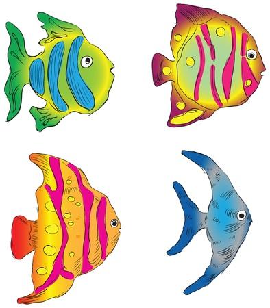 南の海観賞魚。  イラスト・ベクター素材