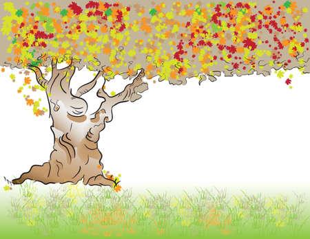 frondage: Autumn. Old tree with deciduous foliage. Illustration