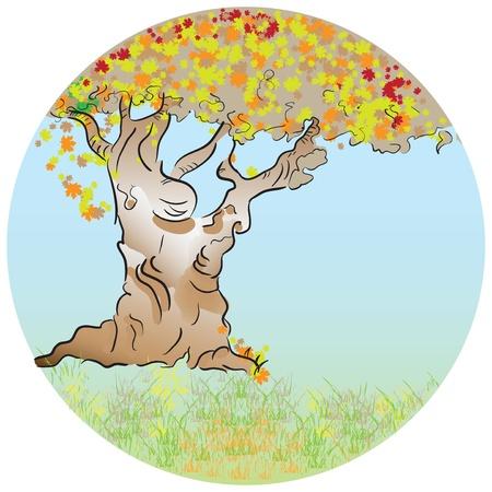 Autumn. Old tree with deciduous foliage. Vector illustration. Ilustração