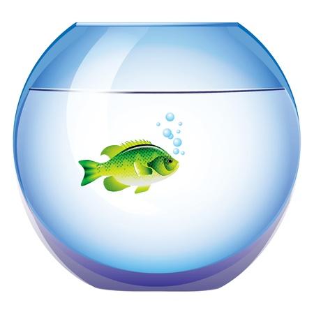 Round aquarium with a fish. Vector illustration.
