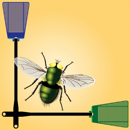 Plastic fly swatter to kill insects.