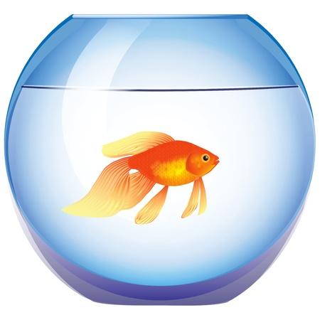 Fishbowl met een goudvis Stock Illustratie